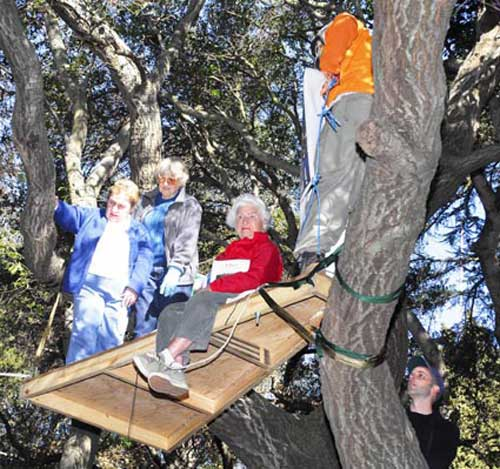 Former Berkeley Mayor Shirley Dean, City Councilmember Betty Olds and environmentalist Sylvia McLaughlin drew a flood of media attention when they became Berkeley's oldest tree-sitters on Jan. 22, 2007. The trio brought 245 years of savvy to a high-profile protest to save the grove of trees UC Berkeley hoped to ax to make way for the $125 million gym complex along Memorial Stadium's western wall. The project was completed despite their objections and has been a financial disaster.