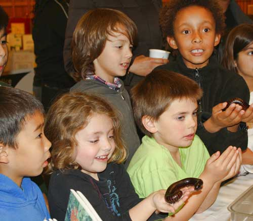 "A group of Kindergarteners and 2nd graders make new ""friends"" the Insect Discovery Lab."
