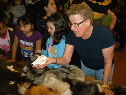 Two 2nd graders explore animal pelts and skulls with a volunteer from the Oakland Museum of California.