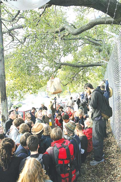 A crowd sends food and water up to the oaks tree-sitters on Wednesday, a day after UC police cut down some tree supports.