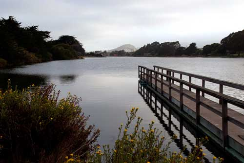 View of Albany Hill from Berkeley's Aquatic Park