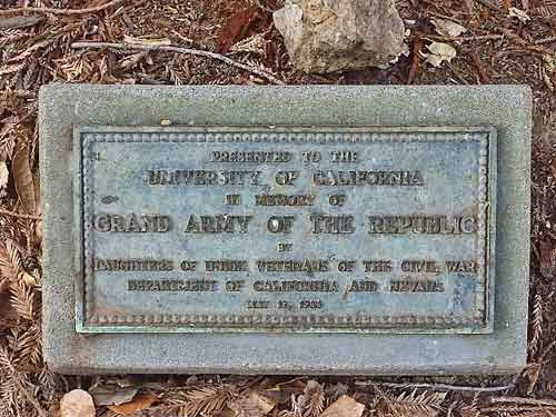 The tree is marked by a small plaque placed in 1933, one of nearly a dozen widely diverse veterans memorials on the Berkeley campus.