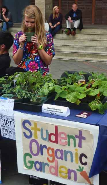 The experimental garden at the Oxford Tract was celebrating its 40th birthday, and also had a campus table selling plants.