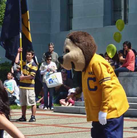 The real Oski was a highly visible presence throughout the day.   Here he emcees a spirit rally on Sproul Plaza.