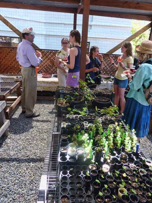Volunteers and guests gathered inside amidst racks of native plant seedings.
