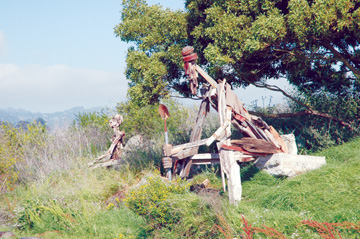 Richard Brenneman: Two figures sculpted from driftwood and scrap lumber stand watch over the Albany Bulb. State officials say the clever creations must go before they'll accept the site into the Eastshore State Park..