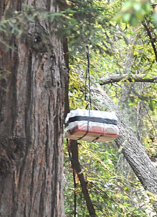 A package of bottled water, provided by UC Berkeley police, is pulled up by tree-sitters Thursday.