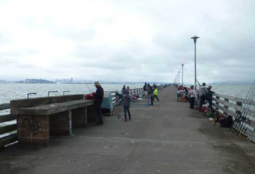 The Pier is a popular recreational resource for fishermen, strollers, and sightseers.