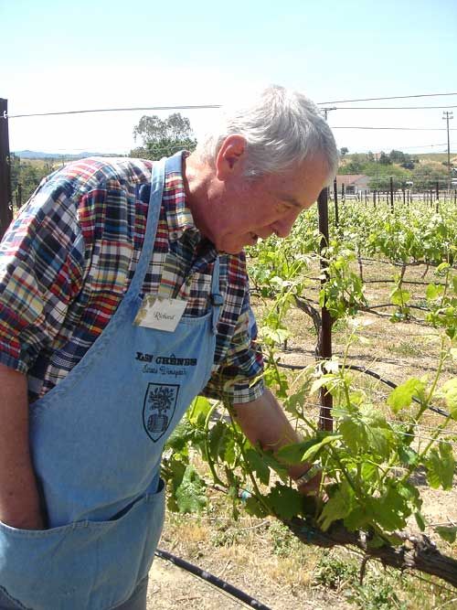 Richard Dixon, owner of Les Chenes winery, examines Bent Creek's vines.