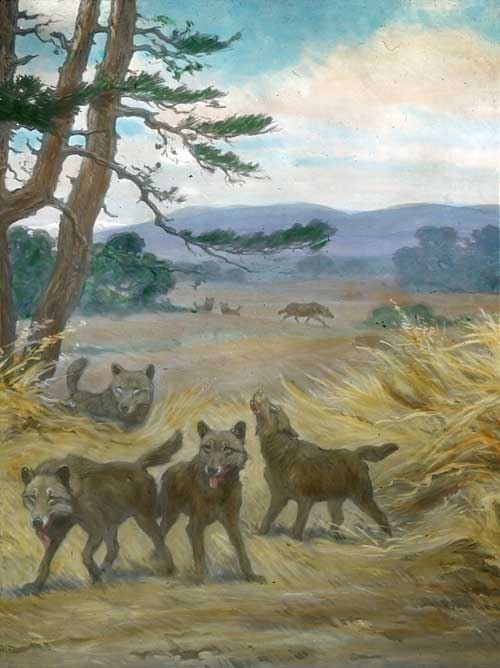 A dire wolf pack as imagined by Charles R. Knight.