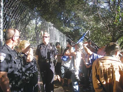 Campus police guarded the fence around the oak grove Wednesday as media crews and onlookers watched the fenced-in tree sitters. Photograph by Riya Bhattacharjee.