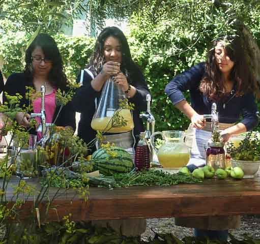 Contra Costa Students prepared fresh fruit and herb beverages.