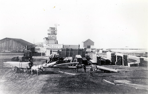 The West Berkeley Lumber Company in the 1890s