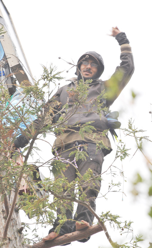 Huckleberry, the last Berkeley treesitter to surrender Tuesday, waves to supporters before he climbs down to waiting campus police.