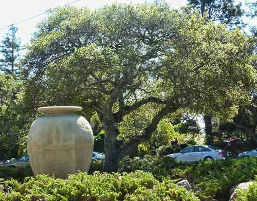 A second recreated urn sits against the backdrop of oaks in a nearby traffic island at Yosemite and The Alameda.