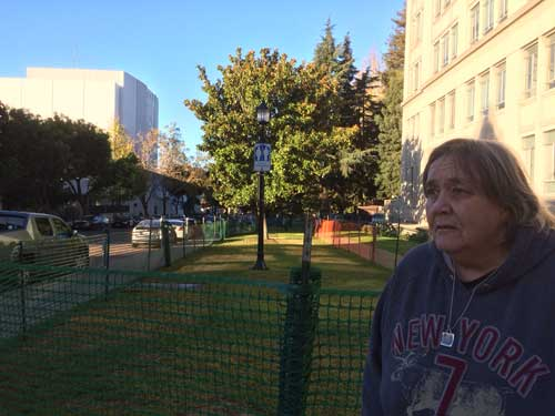 Local organizer Barbara Brust stands beside the newly fenced park grass after protesters are routed.